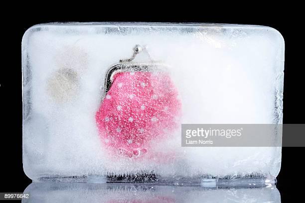 a purse frozen in ice