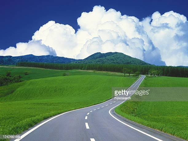 a Road, Surrounded By a Huge Flat Grassland Under a Blue Sky, High Angle View, Hokkaido Prefecture, Japan