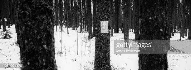 a site of mass executions Karelia The Gulag was a monstrous network of labor camps that held and killed millions of prisoners from the 1930s to the...