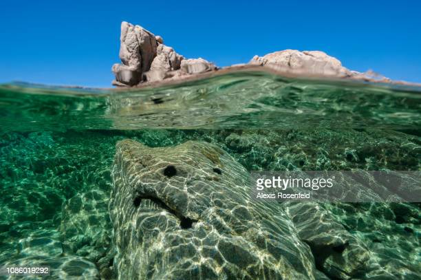 a splitted view midair midwater in the corsican waters on august 19 2011 in Porto Pollo France The Mediterranean represents a hotspot of marine...