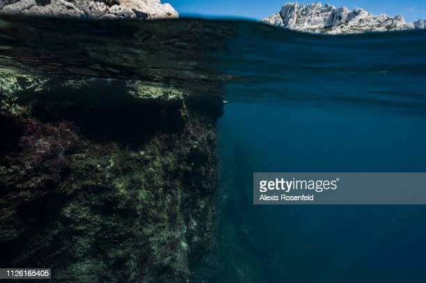 a splitted view underover water in the national park of the calanques on may 26 2016 in Marseille France The Mediterranean represents a hotspot of...