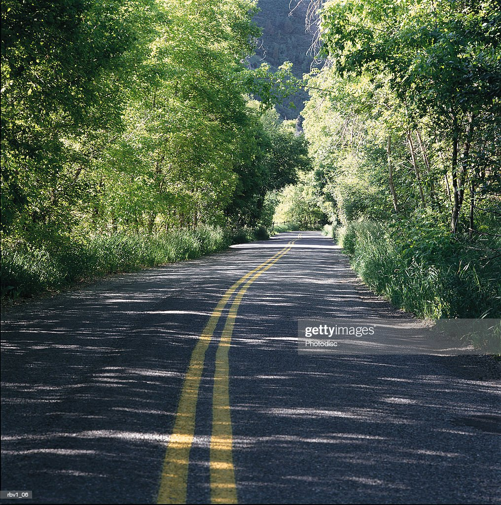 a stretch of long highway road with a center double line between thickets of trees : Foto de stock
