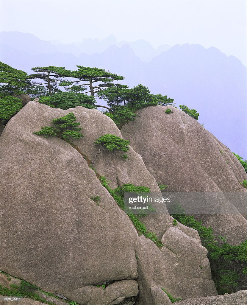 a vertical image of smooth tree lined rock in china : Stockfoto