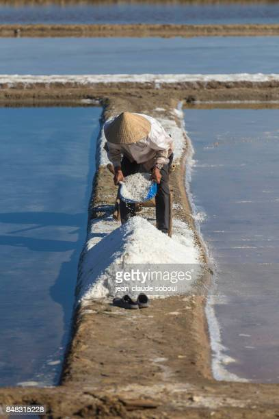 a Vietnamese recovering salt, in Binh Thuan province (vietnam)