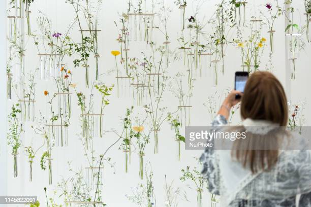 a visitor takes a picture of an installation in Royal Hospital Chelsea gardens as the RHS Chelsea Flower Show opens in London England on May 20 2019