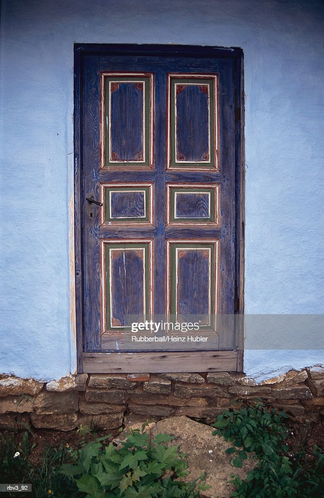 a wooden door stands in a blue stucco wall with green plants below it : Foto de stock