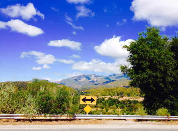 a yellow right turn or left turn only traffic sign at the end of a country road in California - with mountains in the background