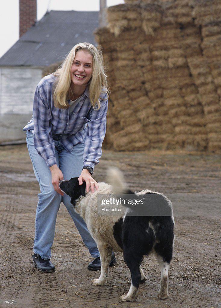 a young blond haried woman in blue jeans and a blue checkered shirt is bending down to pet a balck and white dog with a farmhouse and hay bails in the background : Foto de stock