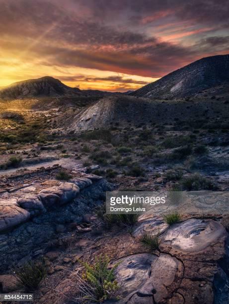 Añadir a Board  Tabernas desert Almeria, Andalucia, Spain