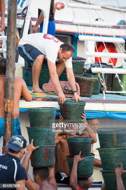 açai market, mercado ver o peso, belém, pará state, brazil - río amazonas fotografías e imágenes de stock