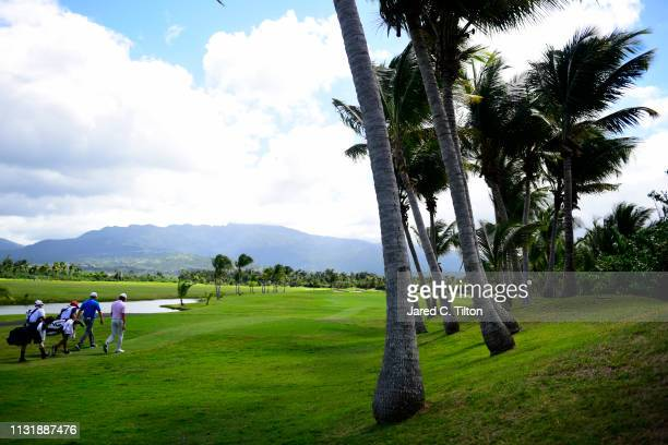 Aaron Baddeley of Australia and Nate Lashley walk the second hole during the final round of the Puerto Rico Open at Coco Beach Golf and Country Club...