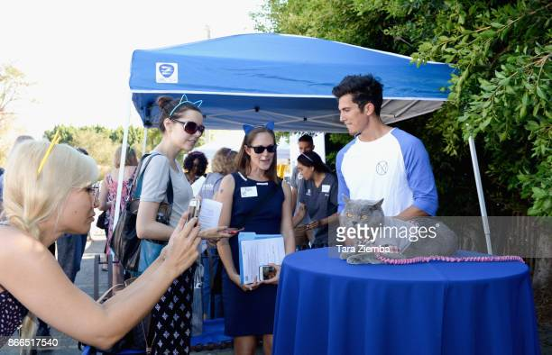 Aaron Benitez and Prince Michael the cat attend the unveiling of 'Cat Luv' mural at Los Angeles Animal Shelter at The Amanda Foundation on October 25...