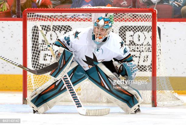 Aaron Dell of the San Jose Sharks gets ready to make a save against the Arizona Coyotes at Gila River Arena on February 18 2017 in Glendale Arizona