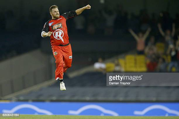 Aaron Finch of the Melbourne Renegades celebrates the run out of Adam Voges of the Perth Scorchers during the Big Bash League match between the...
