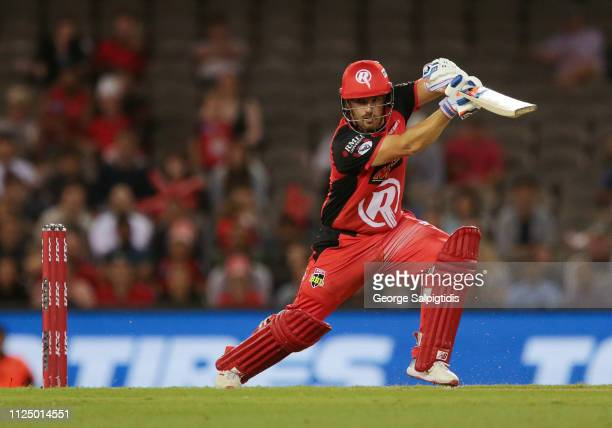 Aaron Finch of the Melbourne Renegades during the Big Bash League semi final between the Melbourne Renegades v Sydney Sixers at Marvel Stadium on...