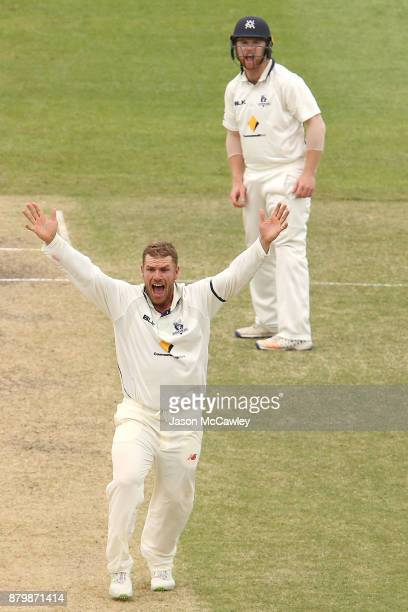 Aaron Finch of Victoria celebrates the wicket of Sean Abbott of NSW during day four of the Sheffield Shield match between New South Wales and...