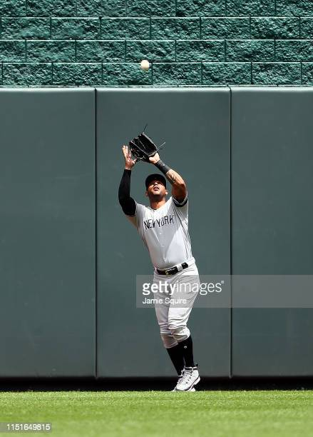 Aaron Hicks of the New York Yankees makes a catch in center field during the game against the Kansas City Royals at Kauffman Stadium on May 25 2019...
