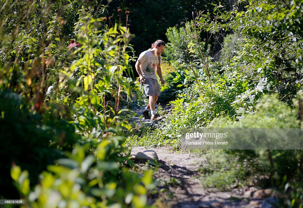 Permaculture : News Photo