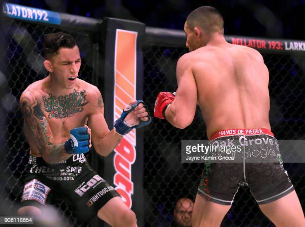 Aaron Pico defeated Shane Kruchten by knockout in the first round of their Featherweight fight at Bellator 192 at The Forum on January 20 2018 in...
