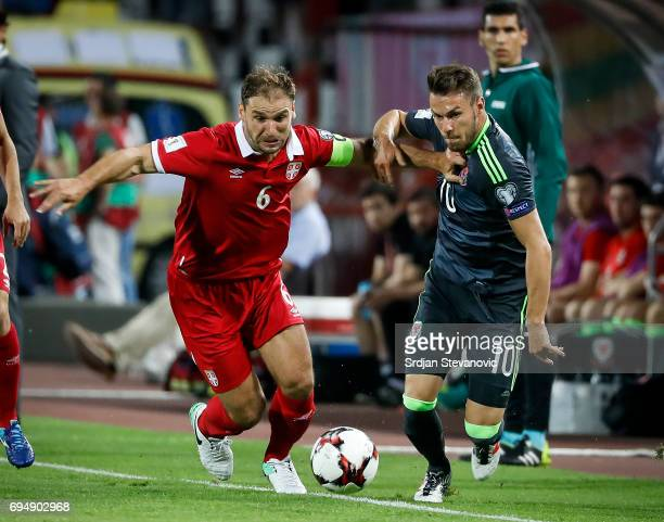 Aaron Ramsey of Wales is challenged by Branislav Ivanovic of Serbia during the FIFA 2018 World Cup Qualifier between Serbia and Wales at stadium...