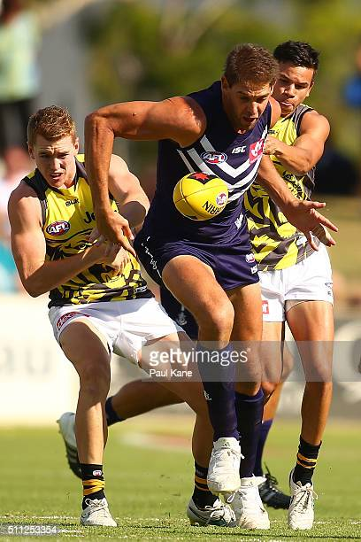 Aaron Sandilands of the Dockers contests for the ball against Jacob Townsend and Daniel Rioli of the Tigers during the 2016 AFL NAB Challenge match...