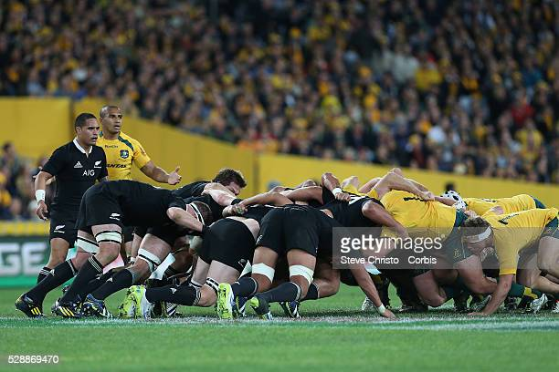 Aaron Smith from the All Blacks feeds a scrum against the Wallabies in the Bledisloe Cup match between Qantas Wallabies and the All Blacks at Stadium...