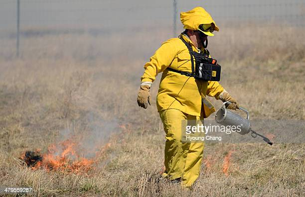 Aaron Vaughn of West Metro Fire Rescue is torching for prescribed burn at Rocky Mountain Arsenal National Wildlife Refuge Commerce City Colorado...