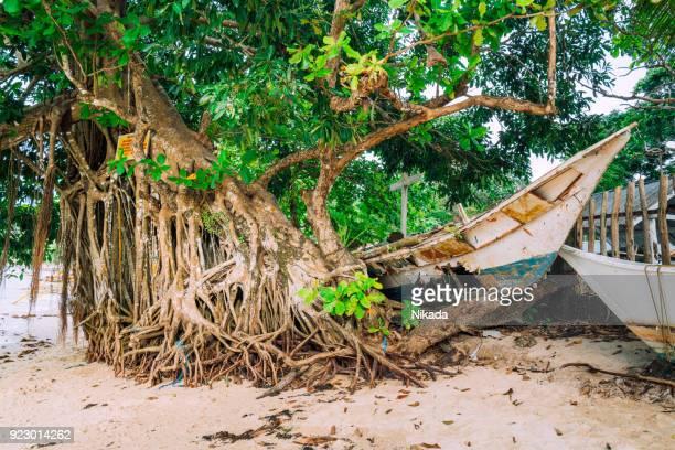 verlassene Boot am Strand
