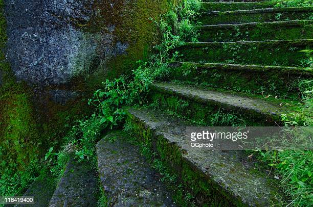 abandoned building stairs - ogphoto stock pictures, royalty-free photos & images