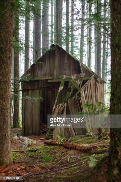 abandoned cabin - 打ち捨てられた ストックフォトと画像