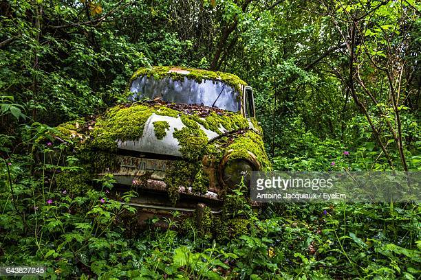 Abandoned Car On Field In Forest