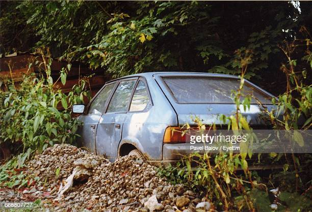 Abandoned Car Parked Under Tree
