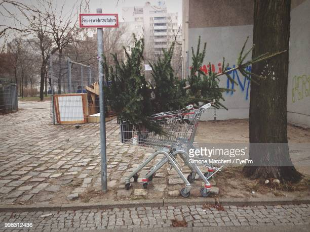 Abandoned Christmas Tree In Shopping Cart On Street