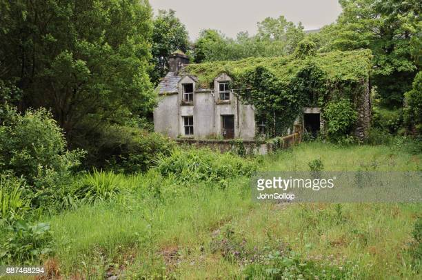 abandoned cottage - old ruin stock photos and pictures