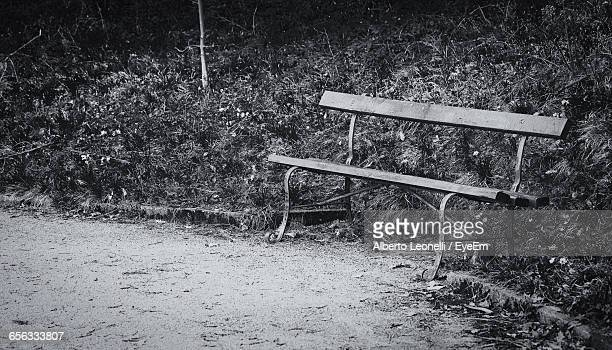 Abandoned Empty Bench At Park