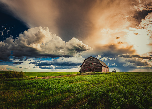 Abandoned Farm Yards in a Field in Spring After a Rain on the Prairies 985893568