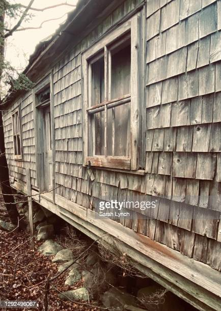 abandoned farmhouse hidden in overgrown forest, rock foundation - smurfs: the lost village stock pictures, royalty-free photos & images