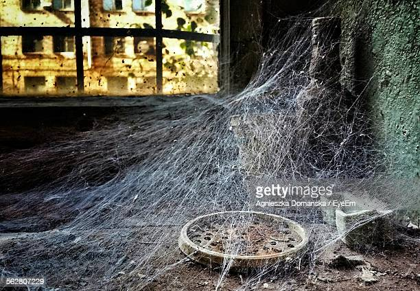 Abandoned House Covered In Spider Webs