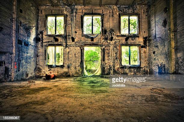 abandoned palace, urban decline - abandoned stock photos and pictures