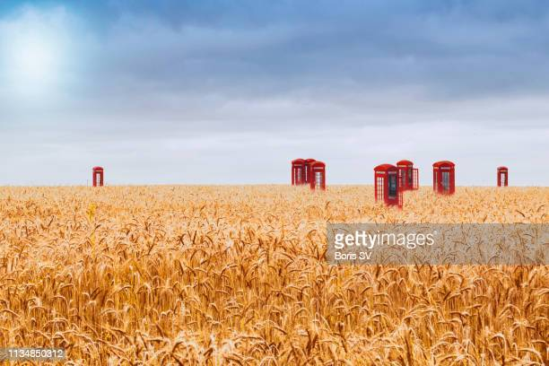 abandoned phone booths in wheat field - out of context stock pictures, royalty-free photos & images