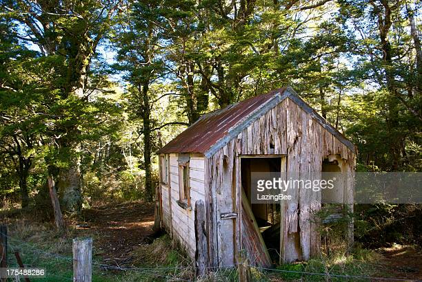 abandoned - shed stock pictures, royalty-free photos & images