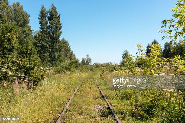 Abandoned railway in the forest