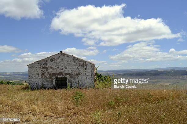 Abandoned Rural Farmhouse in Ronda