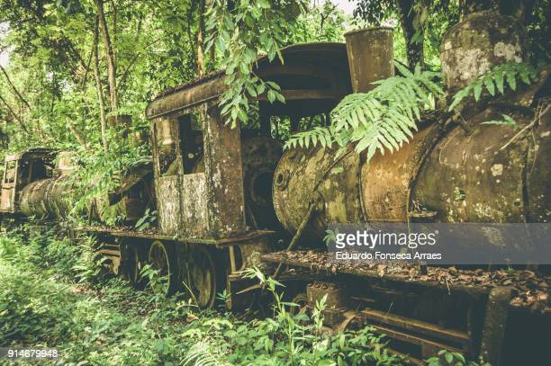 Abandoned Train in the Jungle