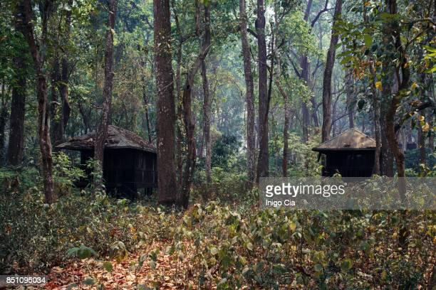 Abandonned houses in the jungle