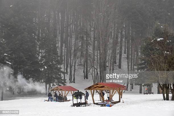 Abant in winter, Bolu Turkey