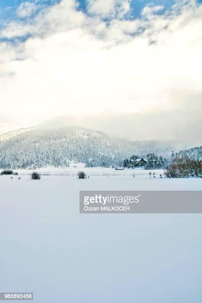 Abant Lake (Frozen) 29-1