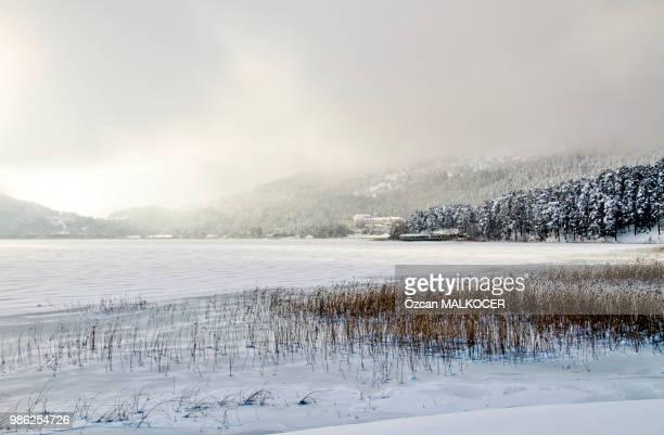 Abant Lake (Frozen) 67-1