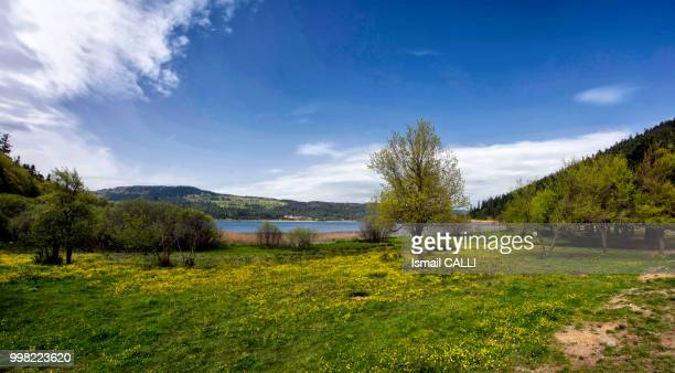 Abant Lake and Spring....