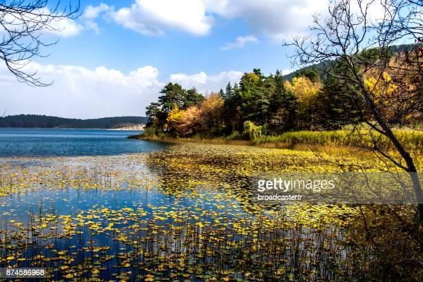 Abant Lake, Bolu, Turkey